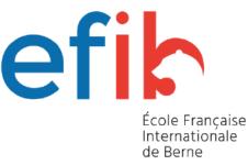 logo EFIB